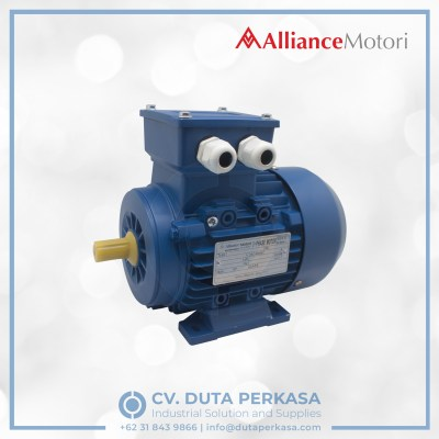 alliance-motori-ecodrive-motor-economic-type-ay3a-series-duta-perkasa
