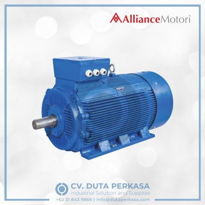 alliance-motori-ecodrive-motor-economic-type-ay3e-series-duta-perkasa