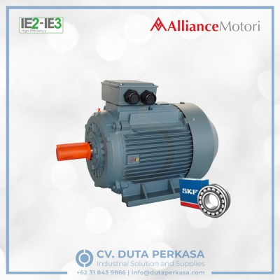 alliance-motori-high-efficiency-motor-ay3x-series-duta-perkasa